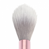 Pro Brush Line - Tapered Highlighting Brush