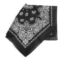 Load image into Gallery viewer, Black Paisley Bandana