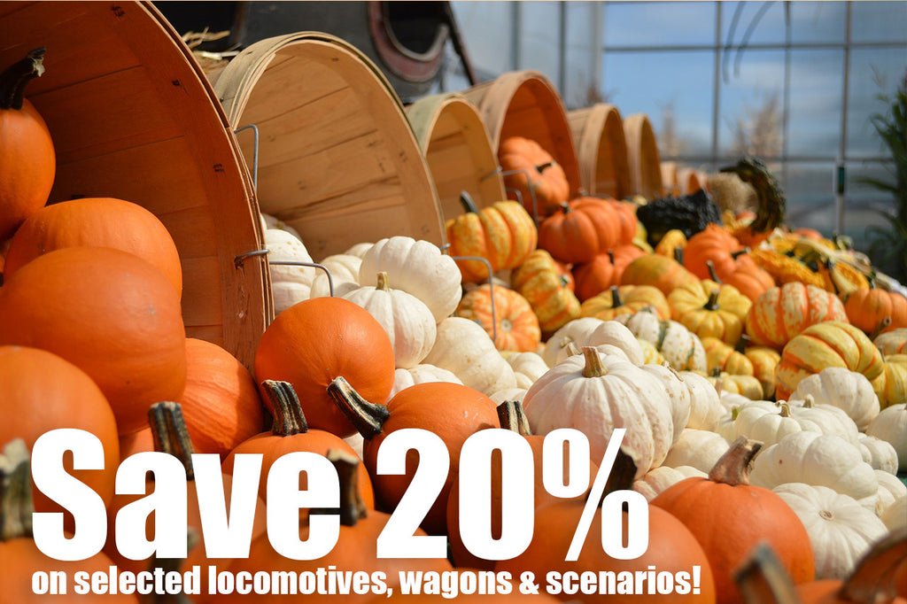 Celebrating Thanksgiving with a 20% discount!