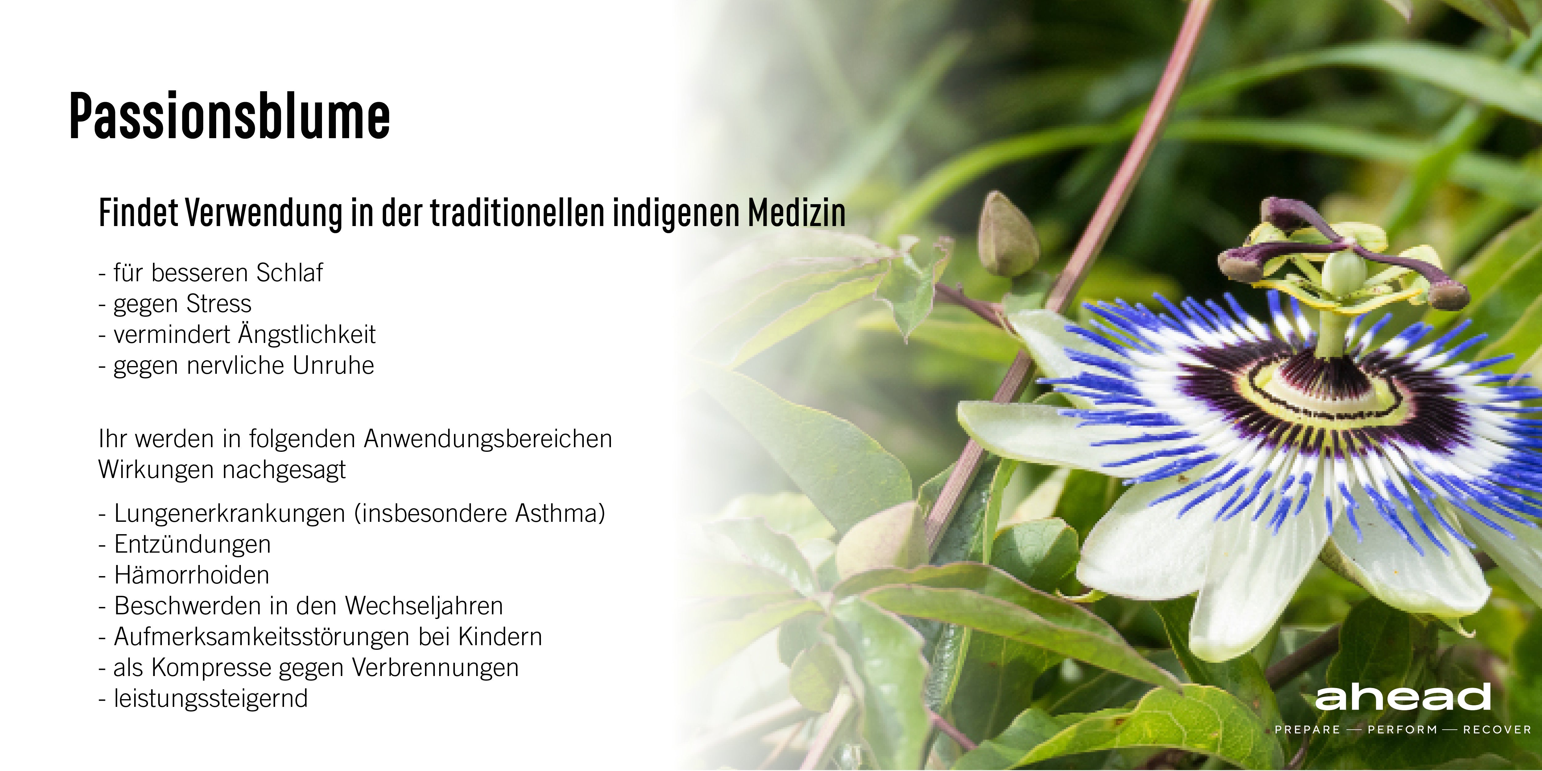 Benefits and uses of passionflower