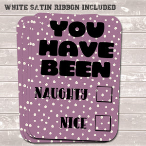 Christmas Gift Tags, Naughty / Nice, Funny Present Accessories (Pack of 8)