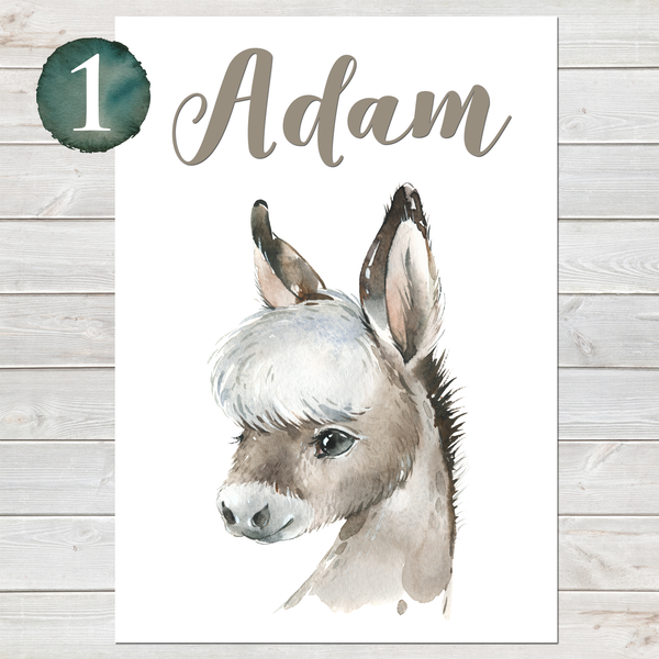 Baby Donkey Print, Cute Personalised Animal Print for Kids