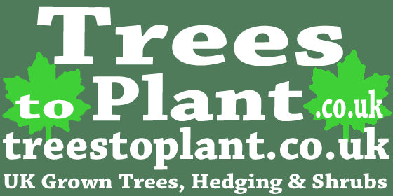 Trees to Plant