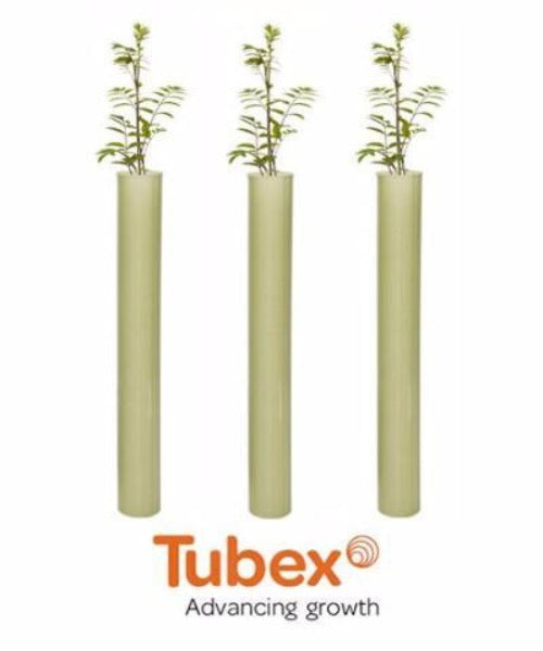 Tubex Ecostart for Deciduous Hedge & Tree Planting (0.6m) *Recommended* - Trees to Plant