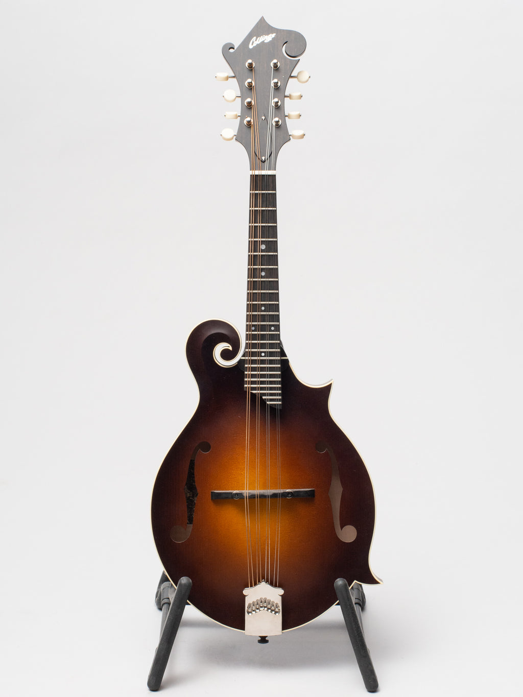 Collings MF Mandolin SN 2125