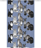 Kitties Curtain 140x240 cm
