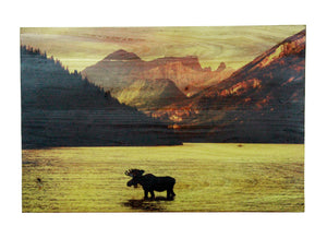Moose in Lake Distressed Look Wall Panel