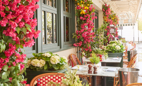 best-dining-spots-harry's-dolte-vita-sincerely-nude