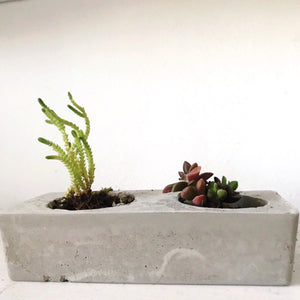Perfect Pair Planter