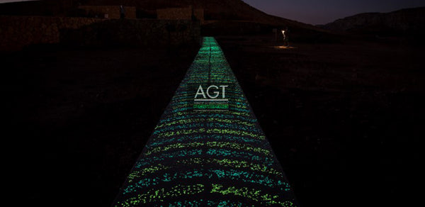 Glow in the Dark Concrete Bike & Pedestrian Path