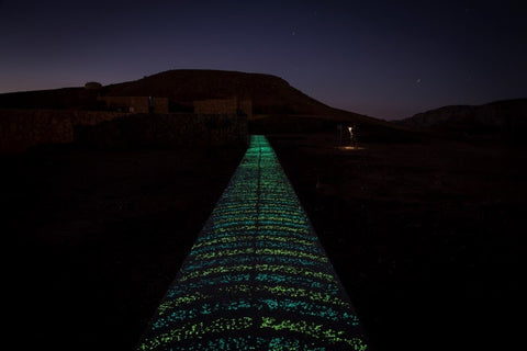 Glowing Pathway in Israel