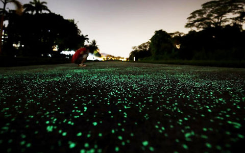 Glowing concrete walking path using AGT ULTRA Glow Stones