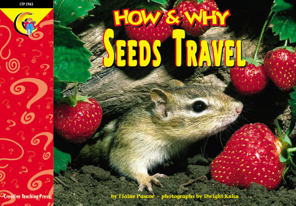 Seeds Travel