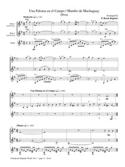 Camerata Amistad - Touring the Hispanic World, Vol. 1 (Two Flutes and Guitar) - FG18