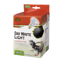 Zilla Day White Spot Bulb Boxed