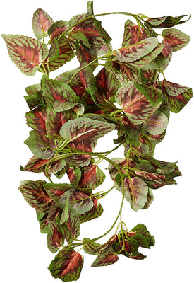 Fluker's Repta-Vines 6' Red Coleus