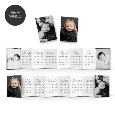 2020 Classic Calendar | Mini Accordion Book - 3 Dollar Photoshop Templates for Photographers