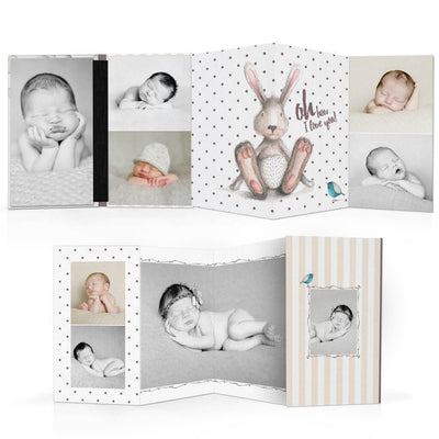 Animal Friends | 4x8 Accordion Book - 3 Dollar Photoshop Templates for Photographers
