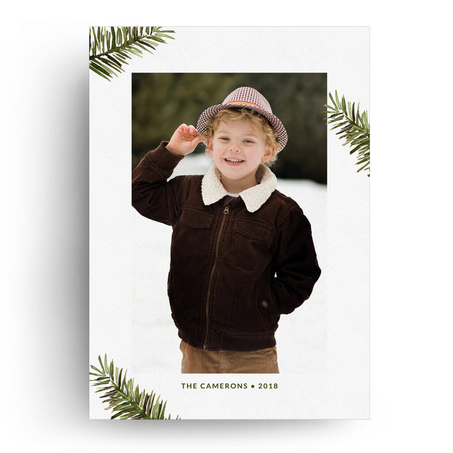 Evergreen Branches | Christmas Card - 3 Dollar Photoshop Templates for Photographers