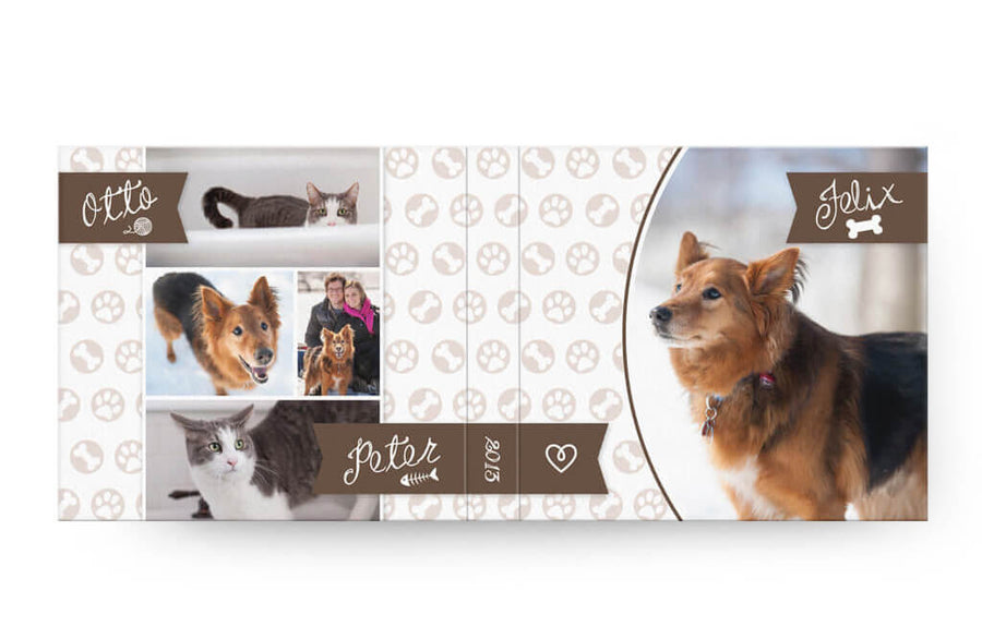 Paws & Claws | USB Case - 3 Dollar Photoshop Templates for Photographers