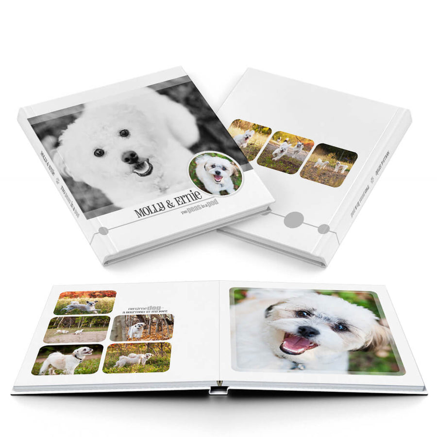 Pet-tastic Album - 3 Dollar Photoshop Templates for Photographers