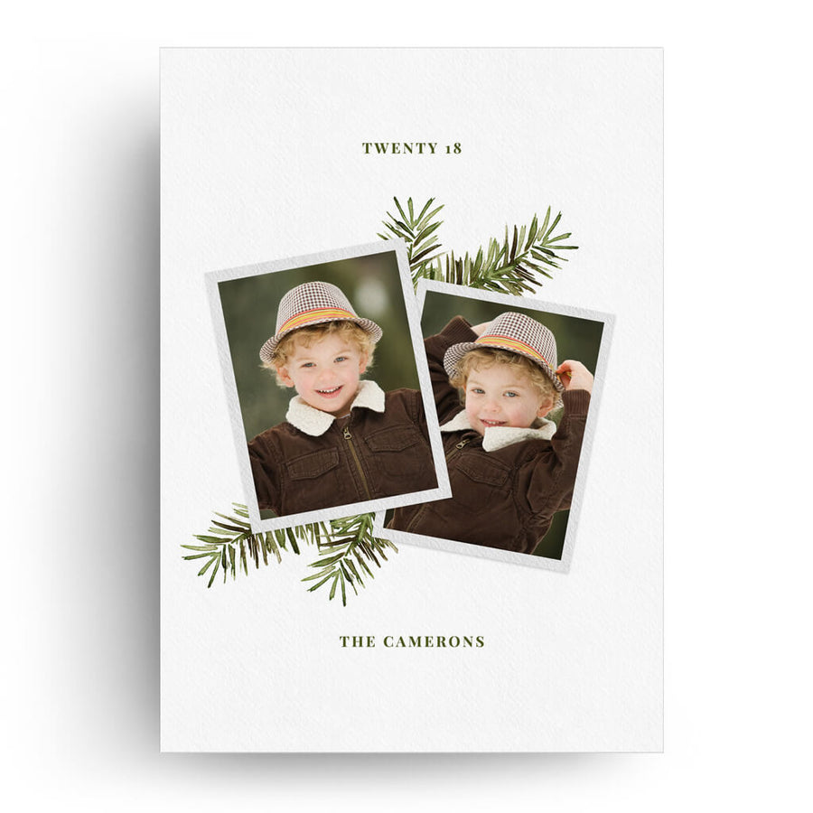 Snapshot Evergreen | Christmas Card