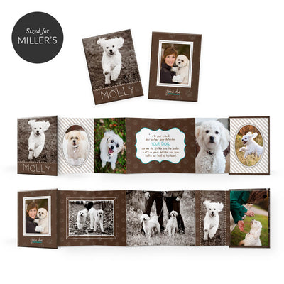 Fuzzy Friends | Mini Accordion Book - 3 Dollar Photoshop Templates for Photographers