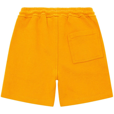 hundred pieces bermuda tiger shorts