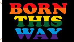 Born This Way Pride Flag