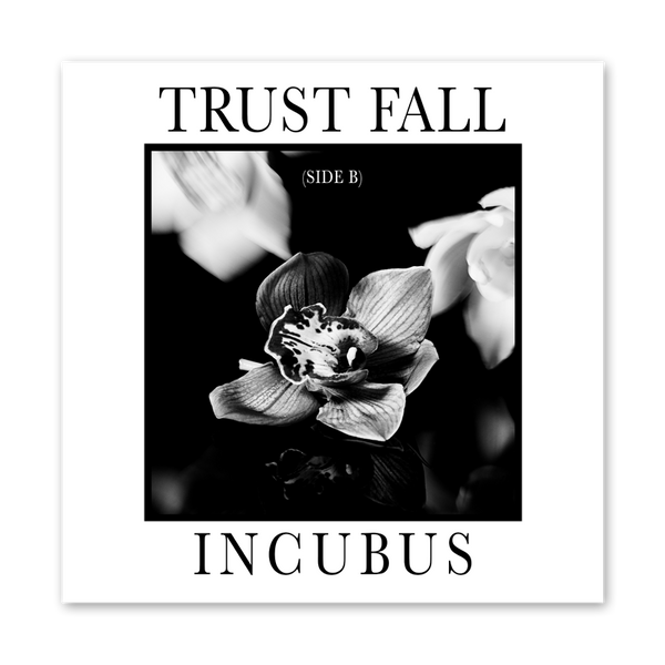 Trust Fall Side B Ep Digi Download