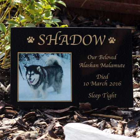 Granite Pet Memorial Stones With Photo Style  2
