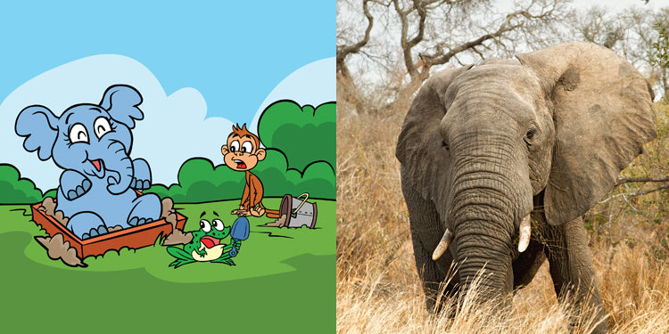 10 Fun Facts About Elephants for Kids in Kindergarten and First Grade