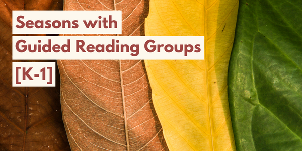 Seasons with Guided Reading Groups—includes FREE Download!