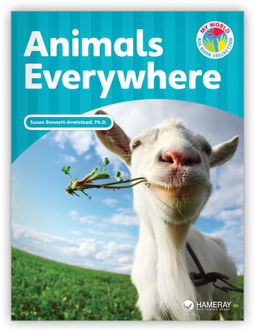 Animals Everywhere Big Book