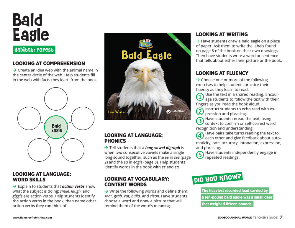 Bald Eagle Teacher's Guide