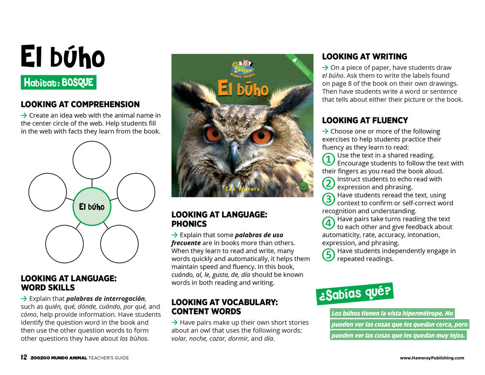 El búho Teacher's Guide