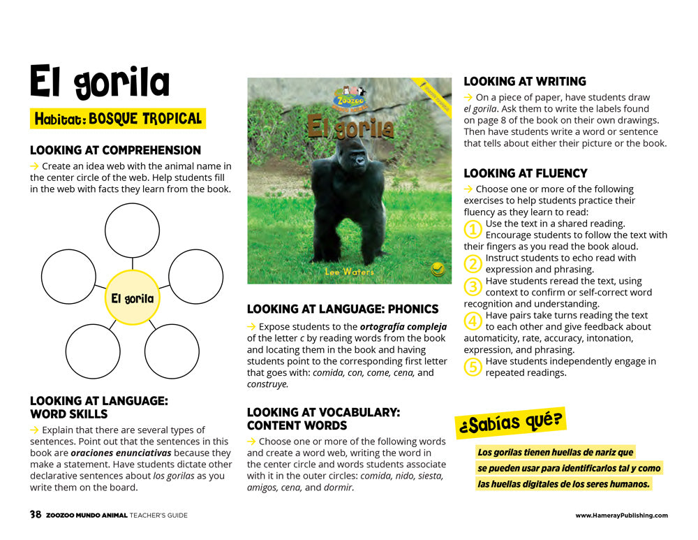 El gorila Teacher's Guide