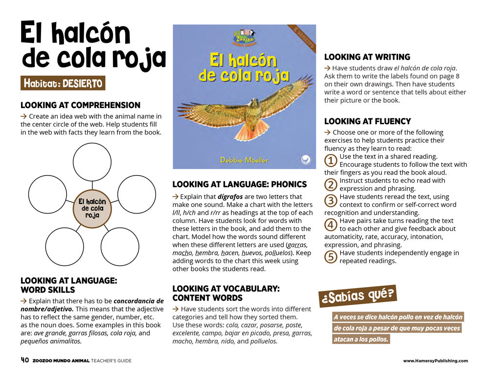 El halcón de cola roja Teacher's Guide