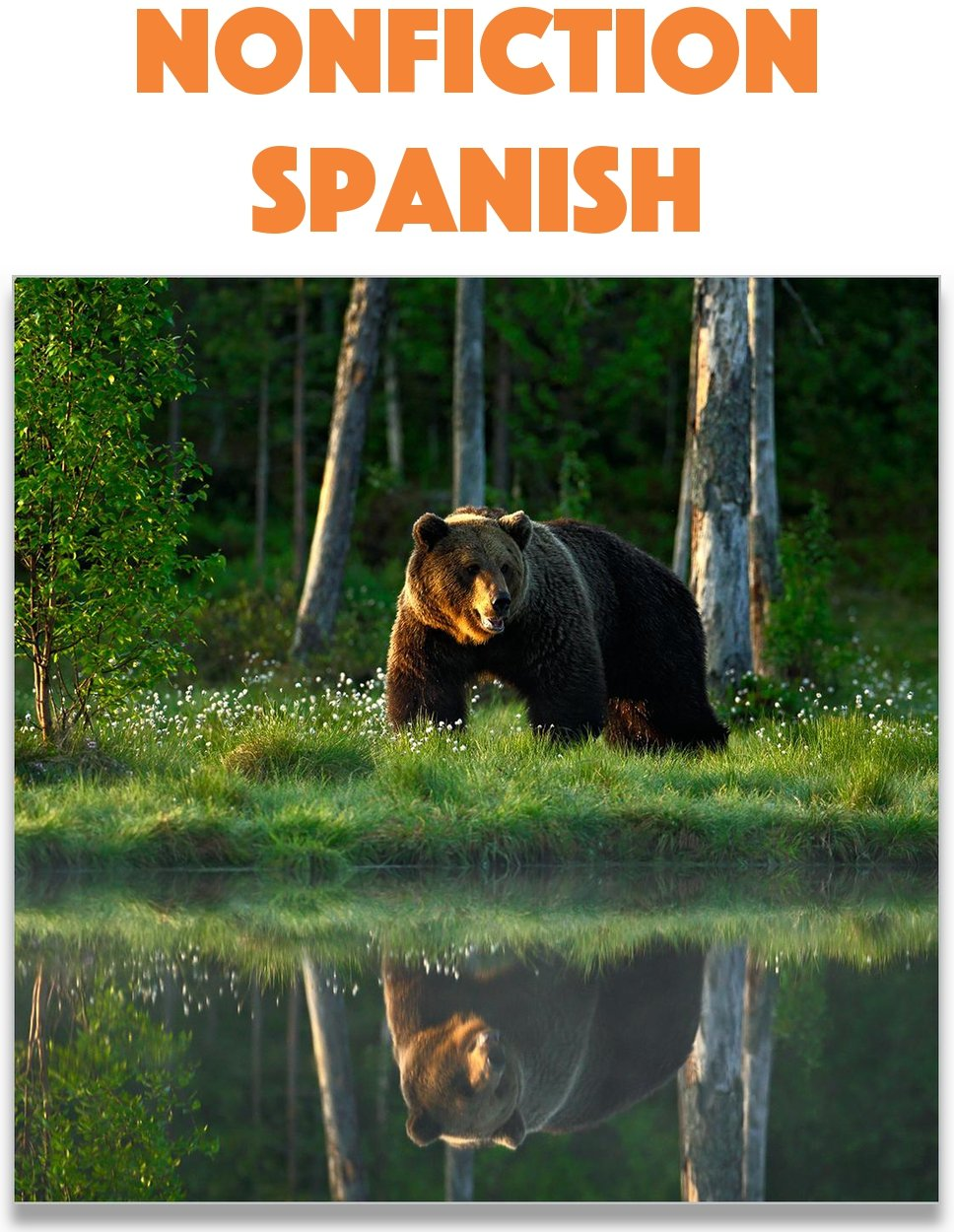 Nonfiction Books & Informational Text in Spanish