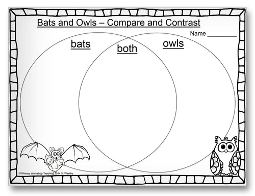 Bats and Owls Comparison Classroom Activity Worksheet