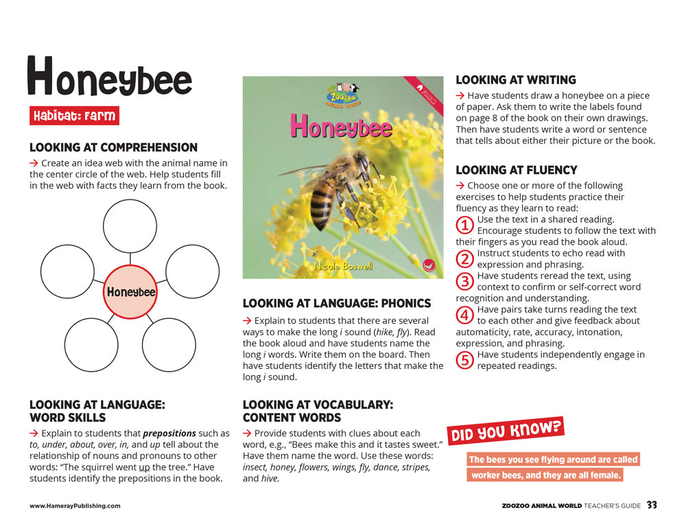 Honeybee Teacher's Guide