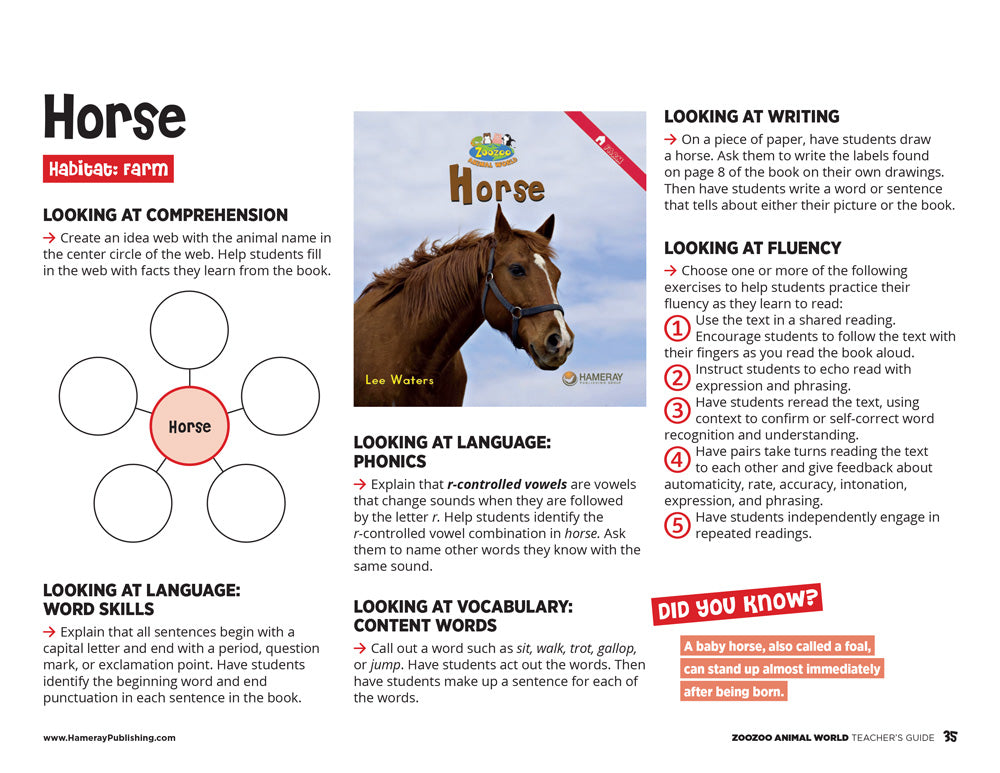 Horse Teacher's Guide