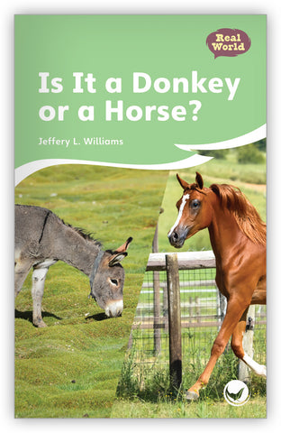 Is It a Donkey or a Horse? Big Book