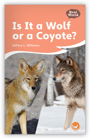 Is it a Wolf or a Coyote?