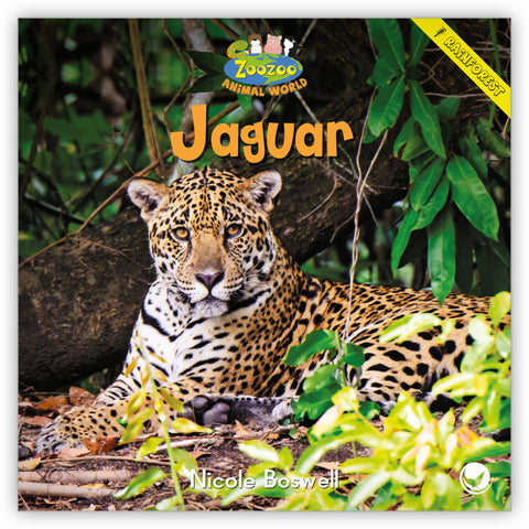 Jaguar Big Book