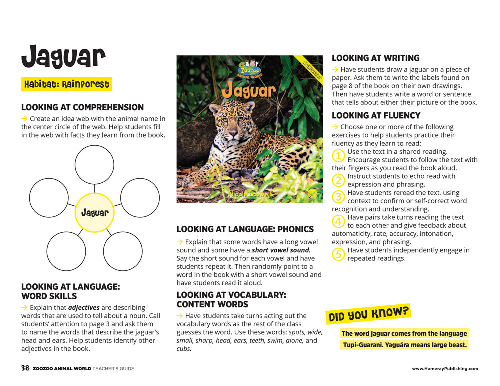 Jaguar Teacher's Guide
