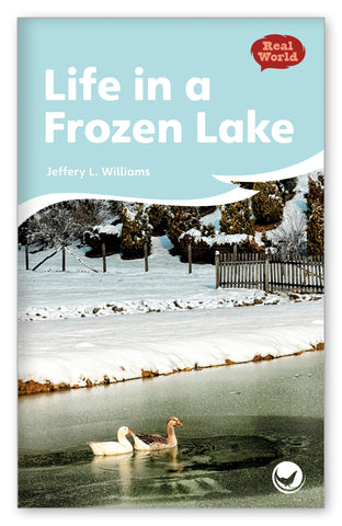 Life in a Frozen Lake