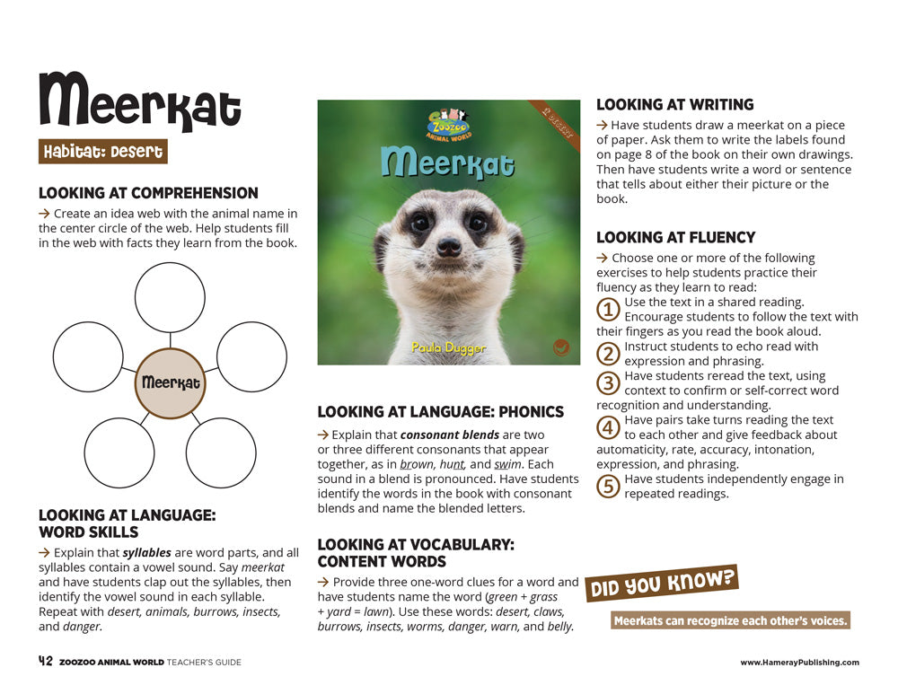 Meerkat Teacher's Guide