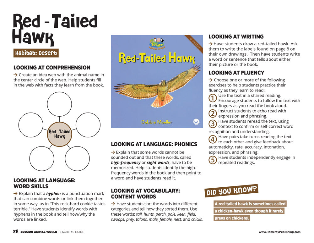 Red-Tailed Hawk Teacher's Guide