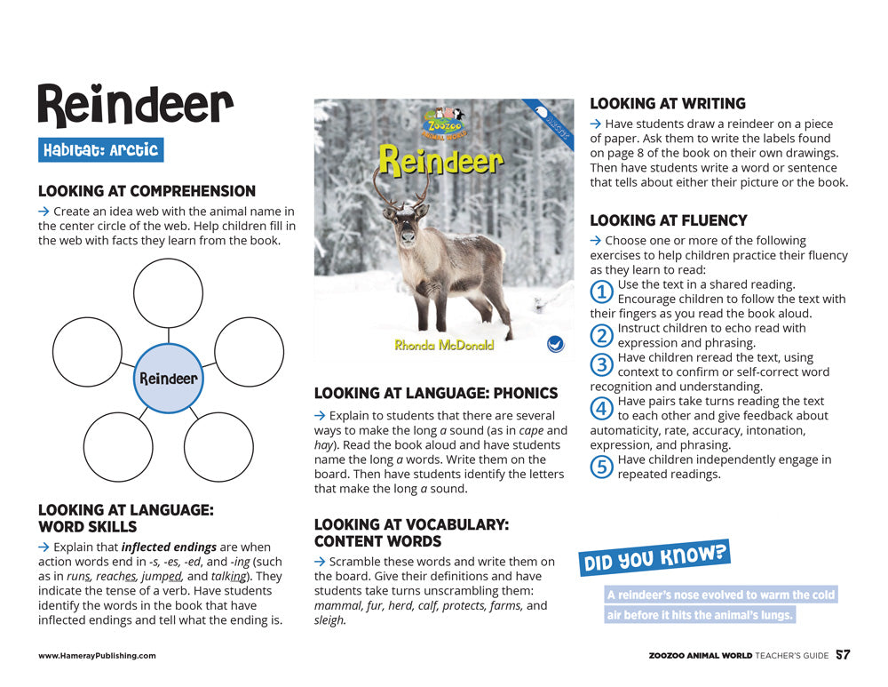 Reindeer Teacher's Guide